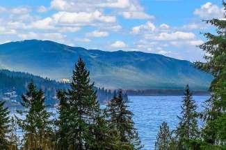 View Daylight Rambler | Executive Lochmoor | Bellevue